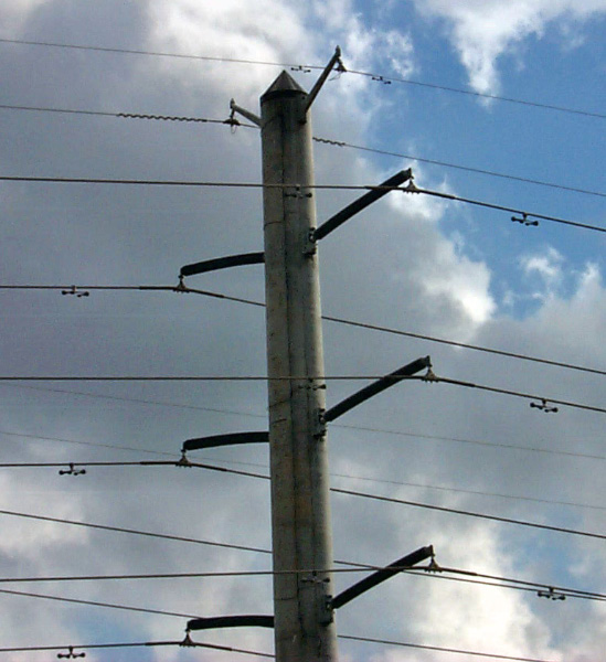 Protective Concrete Poles : Conical and square pole caps prevent birds from perching